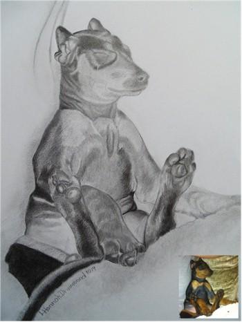 Dog Portraits 14