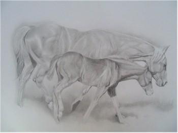 Horse Portraits 4