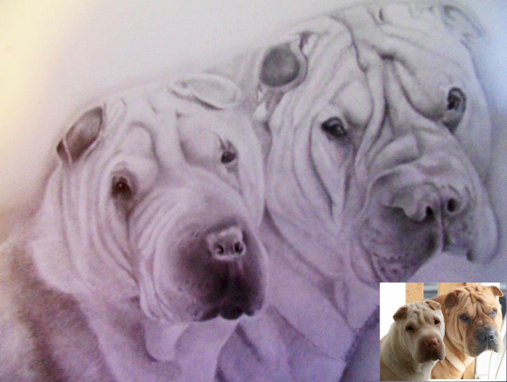 Memorial Portrait of Shar-Pei Dogs