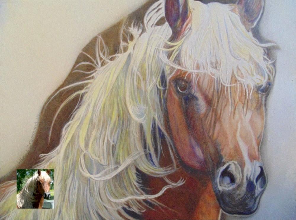 Color Pencil Portrait Drawing Horse 3